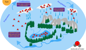 What Is Condensation In The Water Cycle